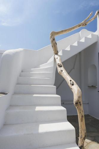 paros-rooms-for-rent-paros-greece-rooms-to-let-apartments-paros-studios-parikia-magginas-studios- accommodation-hotels-vacation-beach-paros-pic-11