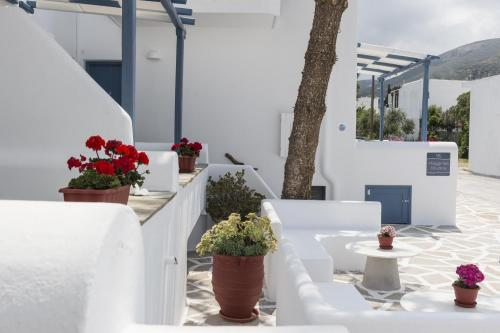 paros-rooms-for-rent-paros-greece-rooms-to-let-apartments-paros-studios-parikia-magginas-studios- accommodation-hotels-vacation-beach-paros-pic-5