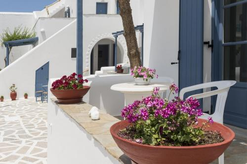 paros-rooms-for-rent-paros-greece-rooms-to-let-apartments-paros-studios-parikia-magginas-studios- accommodation-hotels-vacation-beach-paros-pic-8